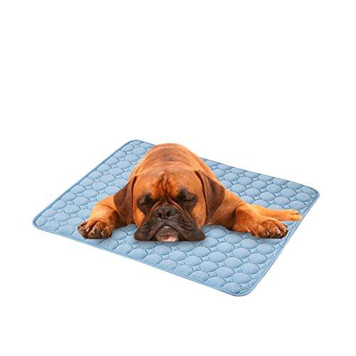 Bloomma Refresher, Teppich von Seide für die Kühlung der Haustier Ungiftig, Sicher Und Bequem, Ideal für Haus, Autositze, Lautsprecher und Betten B:70cm x 56cm