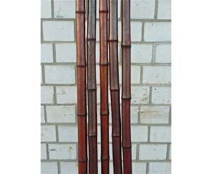 Bambusstangen rot gefärbt, Durch. ca. 4 bis 4,5cm, Länge ca. 300cm
