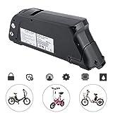 Dpower E-Bike Lithium Batterie,Pedelec Akku 48V Elektrofahrrad Pedelec Li-Ionen Akku Set Kit Umbausatz,48V 10Ah 480W, Schwarz