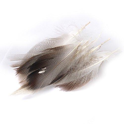 FITYLE Natur Deko Ente Federn für Kleidung Hüte Tasche Kostüm