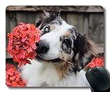 Tappetino per mouse personalizzato, Tappetino per mouse amante dei cani, Fiori Cucciolo di cane Cucciolo di primavera Parco estivo, cani Tappetino per mouse da gioco