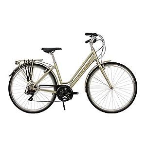 41CkJ3mpN8L. SS300  - Raleigh Pioneer Tour Womens 700C 21SPD Bicycle Sage