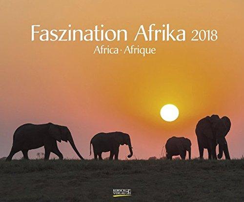 Faszination Afrika 2018: Großer Wandkalender. Foto-Kunstkalender afrikanischer Tiere in der Natur. Querformat 55 x 45,5 cm. Edles Foliendeckblatt und Glanzlackierung.