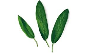 Capsule Salvia Plantui - Confezione da 3 pezzi