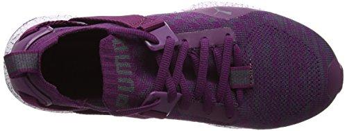 Puma Ignite Evoknit Lo Hypernature, Chaussures Multisport Outdoor Femme Violet (Dark Purple-periscope)