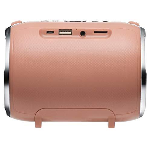 Laile Bluetooth-Lautsprecher Mini Wireless Speaker Player,Metallgehäuse,Stilvoller Auftritt,Die einfache Bluetooth-Verbindung funktioniert mit Allen Bluetooth-fähigen Geräten