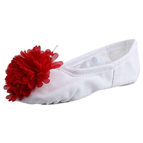 Generic Bambino Ragazze Scarpe da Danza Ballerine Danzanti Pattini da Balletto Pantofole Ginnastica Sport Rosso