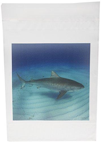 3dRose FL 46337_ 1Tiger Shark Top View Galeocerdo cuvier Tiger Beach/Freeport/Bahamas/atlantic Ocean Garten Flagge, 12von 18 (Bahamas-flagge T-shirt)