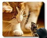 Mauspad, Katzenmauspad, Mauspad für Computer cat280