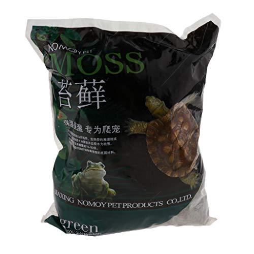 FLAMEER Natürliches Moos Terrarium Bodengrund Schildkröten Schlangen Frösche Moss - 500g