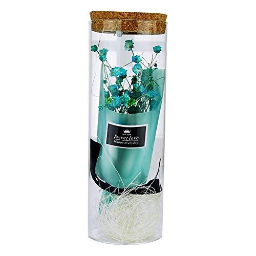 Ssxy gypsophila flower wishing bottle with light, babysbreath fiori immortali fiori secchi in vetro regalo di san valentino - blu