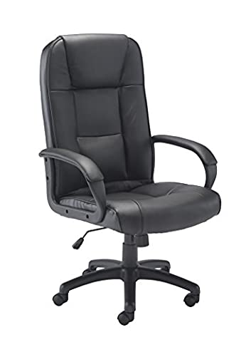 Office Hippo Dynamo Executive High Back Leather Office Chair With Upholstered Arms