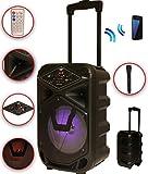 Karaoke Anlage mobile PA Lautsprecherbox Trolley USB MP3 Wireless LED K8-8 DMS®