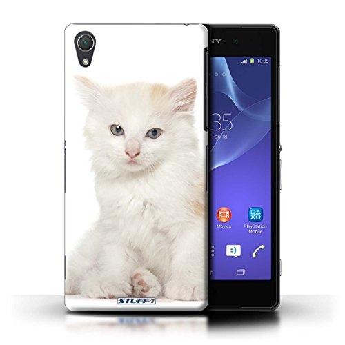 Kobalt® Imprimé Etui / Coque pour Sony Xperia Z2 / Scottish Fold conception / Série Espèces de chats Kurillian
