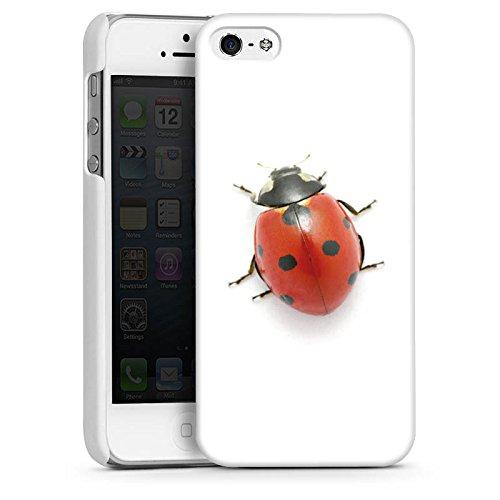 Apple iPhone 4 Housse Étui Silicone Coque Protection Coccinelle Coccinelle Insecte CasDur blanc
