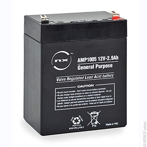 NX - Batterie Plomb AGM 2.9-12 General Purpose 12V 2.9Ah F4.8