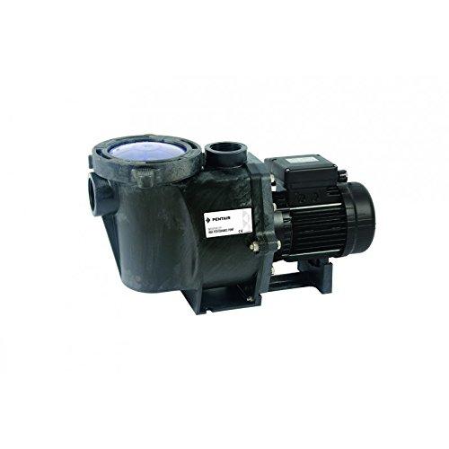 Filterpumpe WHISPERFLO - Pentair - 0,55 Kilowatt - Leistung 0,75 PS