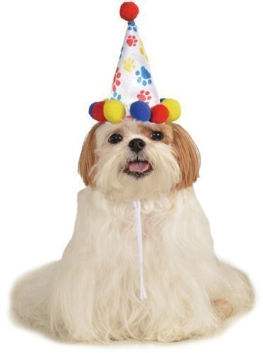 Haustier Hund Katze Tier Entdeckt Happy Geburtstag Hut KostüM Kleid Kostüm Outfit S/M & M/L - Jungen Style, (Hut Tier Kostümen)
