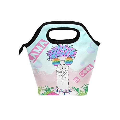 Süßes Alpaka mit Brille Lunchbox Handtasche Sommer Cool Llama Jungen Mädchen Frauen Isolierte Lebensmittelbehälter Gourmet Kühltasche Warm Tasche für Schule Arbeit Büro Student Kinder