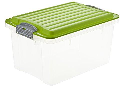 Rotho Aufbewahrungskiste COMPACT transparent mit Deckel in grün, Lager Box aus Kunststoff im DIN A5...