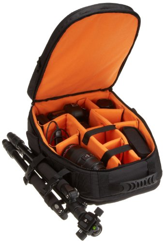 AmazonBasics-DSLR-and-Laptop-Backpack