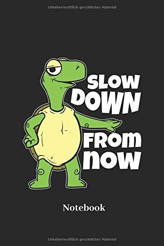 Slow Down From Now Notebook: Liniertes Notizbuch für Reptilien, Langsam Geher, Zu Spät Kommern und Schildkröten Fans - Notizheft Klatte für Männer, Frauen und Kinder