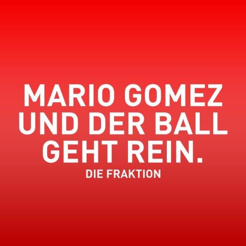 Mario Gomez und der Ball geht rein (Mario Gomez)