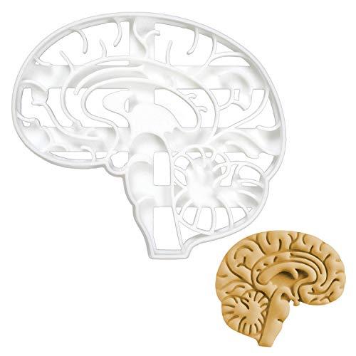 Bakerlogy Anatomisches Gehirn Ausstechform, 1 Teil