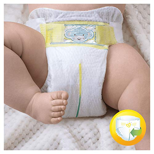 Pampers Premium Protection New Baby Gr. 0 (Micro), 1-2,5 kg Tragepack, 24 Windeln, 6er Pack (6 x 24 Stück) - 3