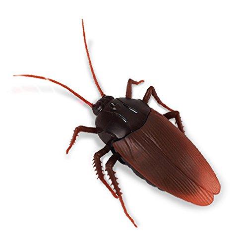 DDG EDMMS Infrarot-Fernbedienung Insektenspielzeug für Halloween, elektrisch, für Erwachsene, 1 Stück (Halloween Erschrecken Katze)
