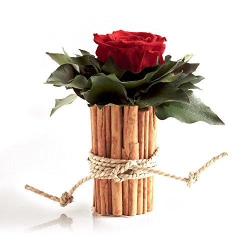 Blumengesteck mit Zimtbecher und 1 Rose konserviert haltbar 3 Jahre Rosengesteck / Blumengesteck / Landhaus / Blumen Deko von ROSEMARIE SCHULZ® Heidelberg (Rot)