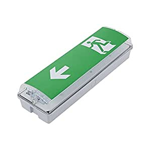 Biard® LED Lumière Sortie de Secours Flèche vers la Gauche - Bloc de Signalisation Rectangulaire - Éclairage de Sécurité - Évacuation - Applique Murale - Coupure de Courant - IP65 - Économie d'Énergie