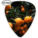 Bunch of Orange Fruits Guitar Picks 12 confezioni, di cui 4 pezzi da 0,46 mm, 0,71 mm e 0,96 mm ciascuno.