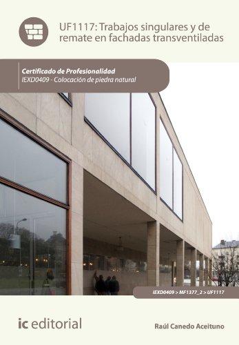 Trabajos singulares y de remate en fachadas transventiladas. IEXD0409 (Spanish Edition)