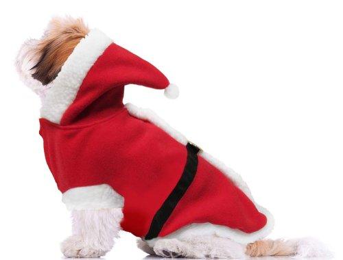 Dogs & Co Santa Paws Weihnachtskostüm für Hunde, GrößeL, 55cm (Santa Paws Dog Kostüm)