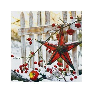 Serviette Star at Fence-Winter (Weihnachtsfeier Tischdekoration)