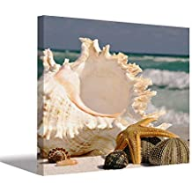 Urban Gifts Seashell Starfish Seashore Beach Canvas Wooden Framed Painting for Home décor Bedroom/Living Room 20X30 inches
