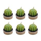 BESTONZON Mini Cactus Bougies Simulation Plan pour la Décoration de la Maison 12PCS...