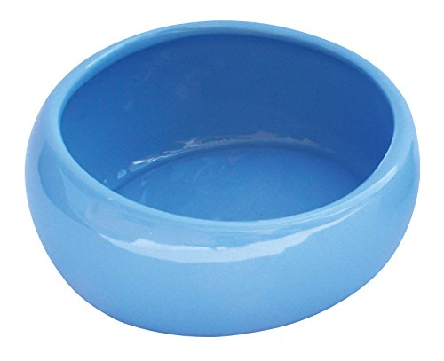 Living World Keramiknapf, blau groß