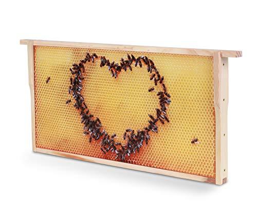 WACHSMACHER Bienenwaben-Bild: Honigwabe mit Bienen-Herz, Geschenkidee für Imker und Bienenfreunde, Bienen Geschenk, Dekoration
