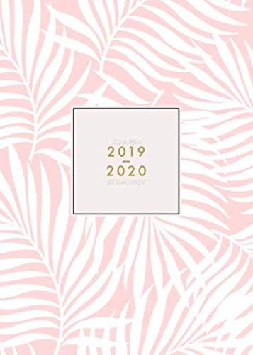 Agenda 2019 2020 Semainier: 18 Mois | Juillet 2019 à Décembre 2020 | Agenda organiseur pour ton quotidien | Calendar & Planificateur 2019 | Motif ... floral rose | Agenda de poche format A5 par  Papeterie Collectif