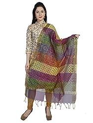 Dupatta Bazaar Womens Dupatta (DB1153_Multicoloured_Free Size)