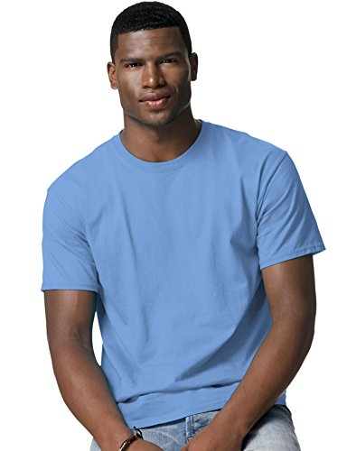 Hanes Tagless T-Shirt_Carolina Blue_2XL (T-shirt Hanes Tagless Xxl)