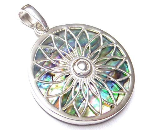 Colgante con diseño de concha de Abalone de plata de ley trabajada, regalo, joyas, símbolo de protección