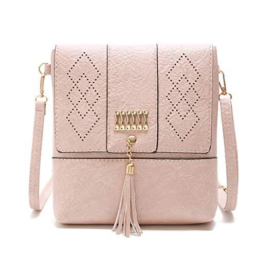 Dooney Frauen Handtasche (Luxus Handtaschen Frauen Taschen Aushöhlen Kleine Umhängetasche Damen Casual Klappe Quaste Messenger Bags Pink 23cm 5cm 20cm)