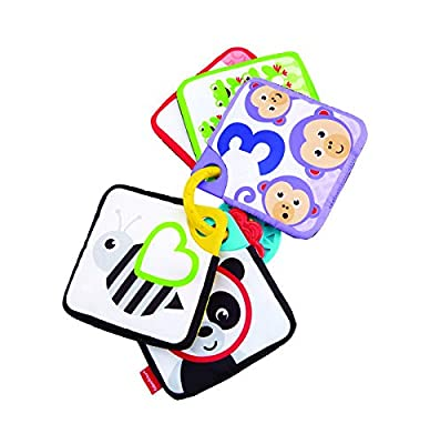 Premieres Cartes Fisher Price