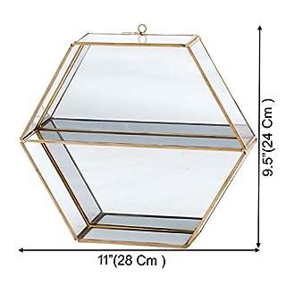 Alza Wall Mounted Brass and Glass Hexagon Decoration Storage Rack Shelf -Large