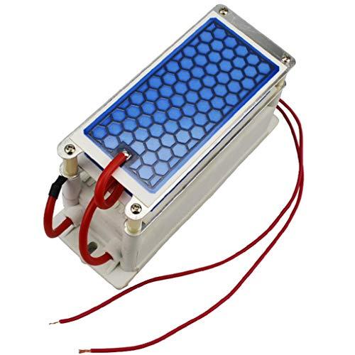 220V 10g Ozon Generator DIY mit Keramikplatte