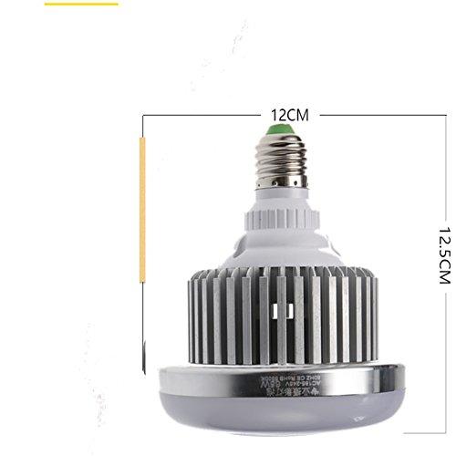 Professionelle Fotografie LED E27Leuchtmittel (65W, 5.500K), flimmerfrei, Softbox, für Foto Studio und Online Celebrity, für Portrait und Artikel zu Beleuchtung - 5
