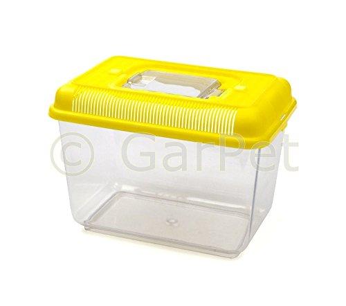 Fauna Box Aquarium Terrarium Becken Kunststoff Faunarium Transportbox Faunabox (Gr.M, gelb)